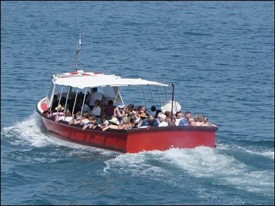 Take a boat trip from the pier to see Dolphins