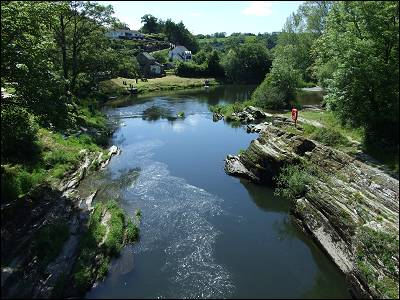The Teifi at Cenarth is a fine salmon fishing river