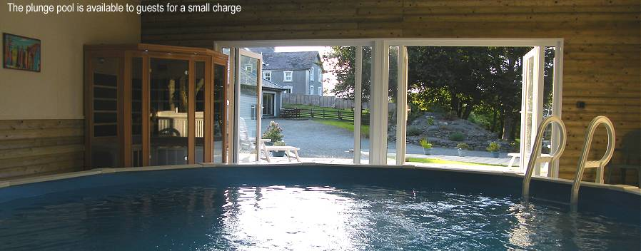 Plunge Pool at Ty Cregyn
